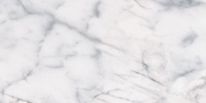 69-136_12x24_Classic_Carrara